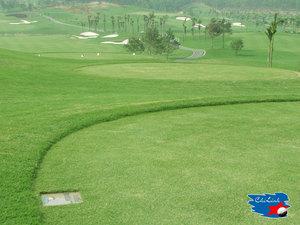 Golf_Chilinh1.jpg