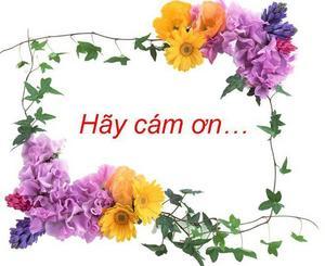Cam_on.jpg