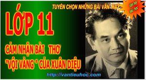 Vantieuhoccom__Cam_nhan_bai_tho_voi_vang_cua_xuan_dieu.jpg